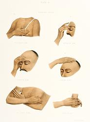 Нажмите на изображение для увеличения.  Название:pd20-410019-[six devotional arm, face, chest and hand signs].jpg Просмотров:0 Размер:32.8 Кб ID:17407