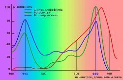 Нажмите на изображение для увеличения.  Название:спектр фотосинтеза.jpg Просмотров:2 Размер:72.4 Кб ID:12525
